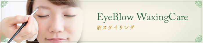 EyeBlow WaxingCare 眉スタイリング
